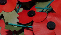 The Poppy Appeal - Nominated by Heidi Nightingale from A. B. Walker